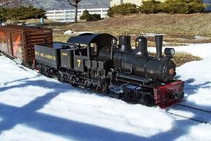 The Schroeder Shay Locomotive
